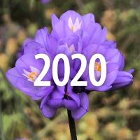 GardenIcons_20